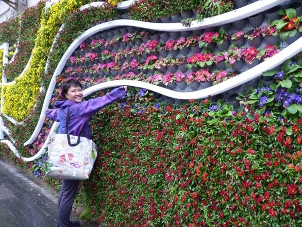 Lily Chin: Wallflower!