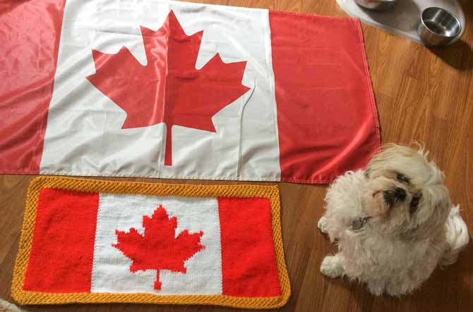 Cynthia's knitted Canadian flag